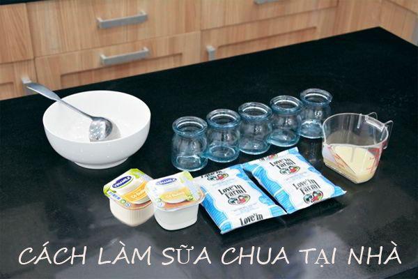 Nguyên liệu làm sữa chua tại nhà đơn giản