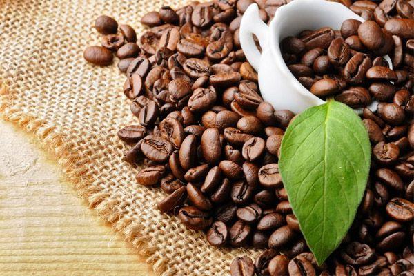 Hạt cà phê đóng gói giúp khử mùi phòng kín