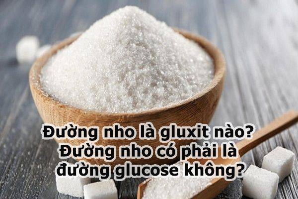 Đường nho là gluxit nào? Đường nho có phải là đường glucose không?