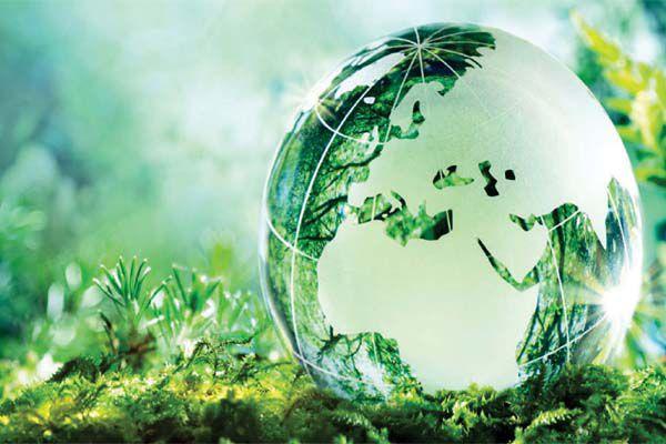 Thuốc trừ sâu bệnh sinh học ít độc hại với môi trường