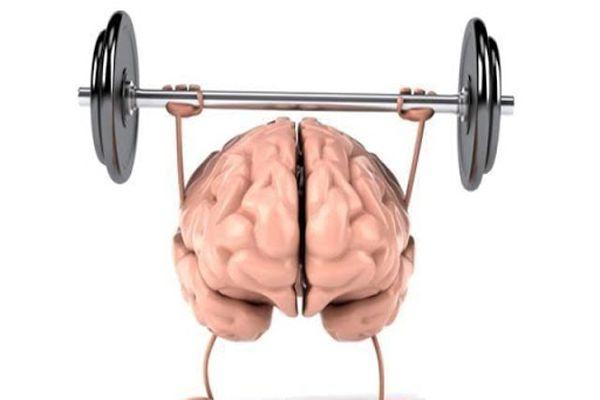 Tốt cho sự phát triển của trí não
